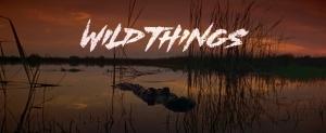 wild-things-blu-ray-movie-title